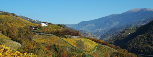 La Valle Isarco in autunno | Granpanorama Hotel StephansHof ****